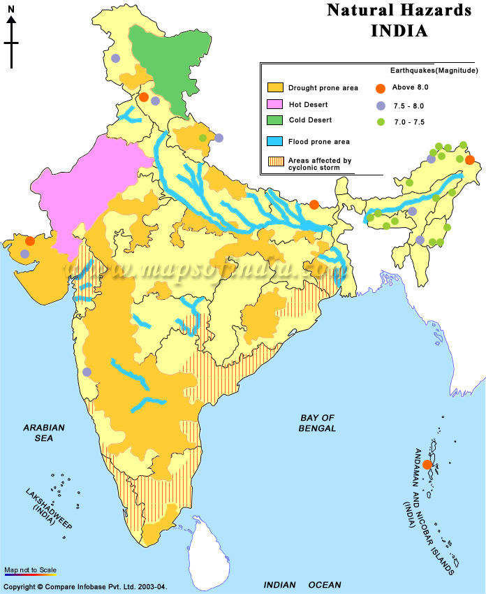 natural vegetation of india Representation central institute of educational technology  file  natural  vegetation of india   a map showing the natural vegetation of india more info .